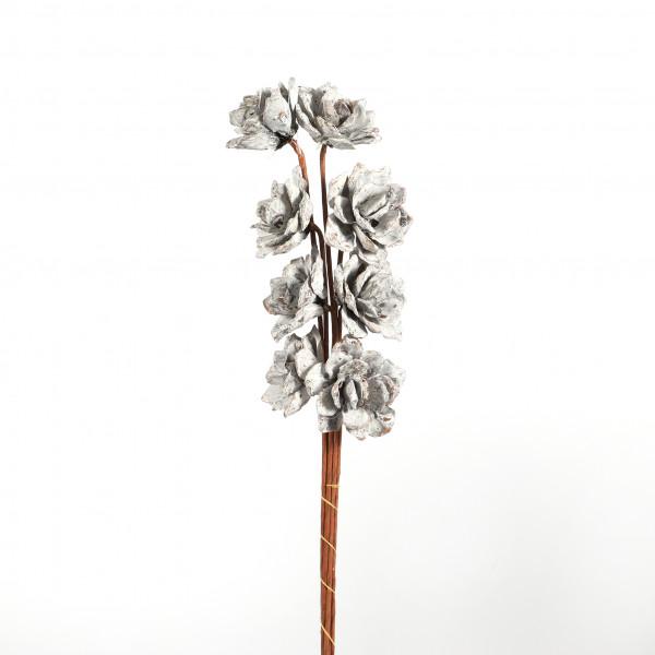Pinienrose white washed 8 cm 8 Stück am Stiel im Blt