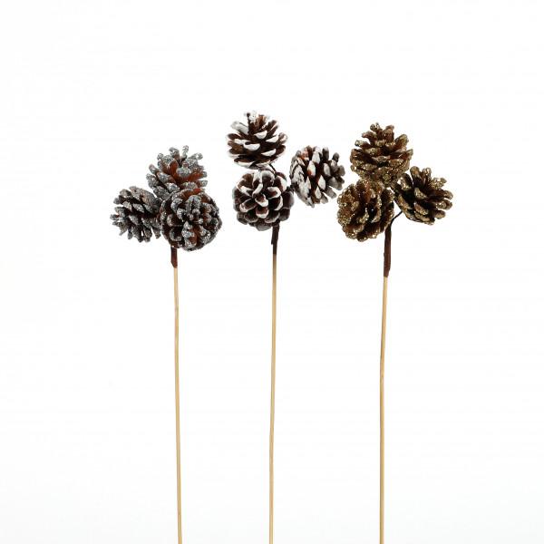 Kiefernzapfen am Bambuspick 30 cm 3 Stück, ca 4 cm