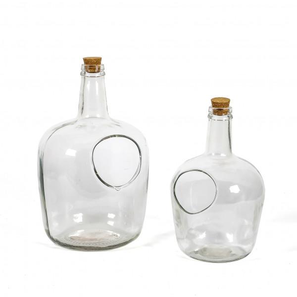 Flaschen Terrarium
