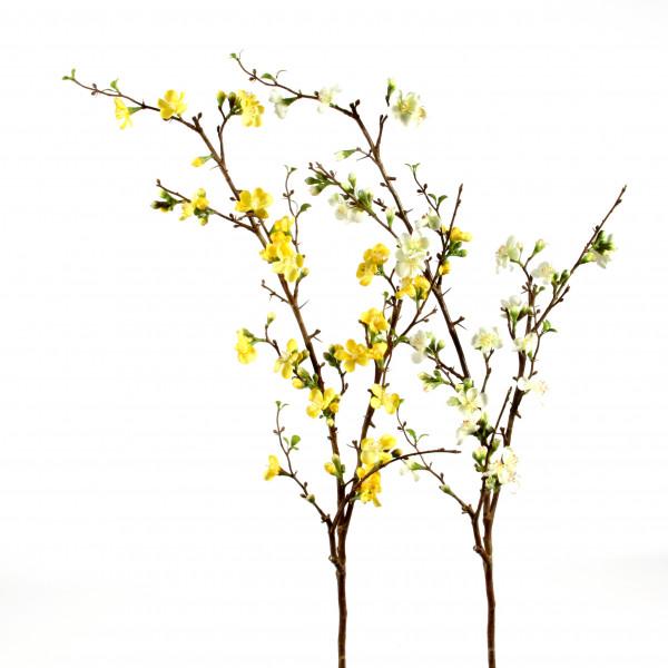 Quitte,117 cm, gelb