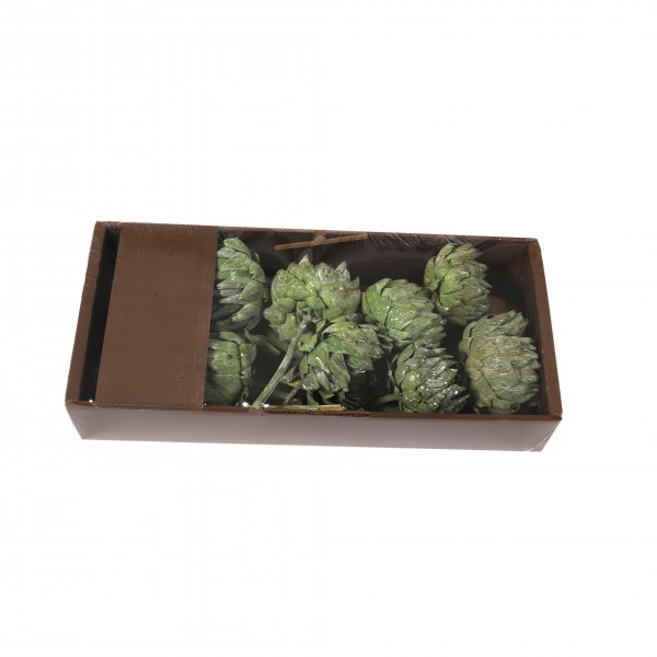 Artischoke grün washed Tray x10 Stück